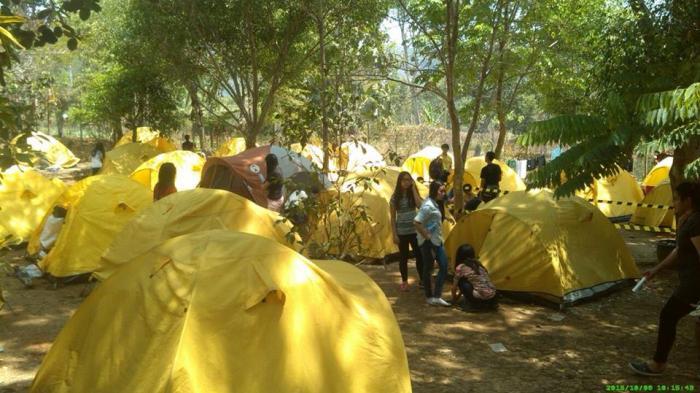 Camping ground di arboretum