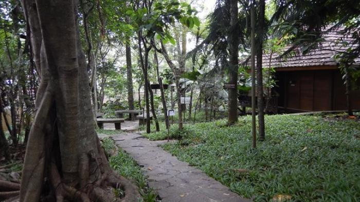 Jalan trekking di P-WEC