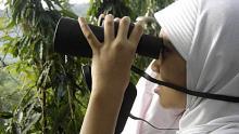 Bird Watching (Pengamatan Burung di Alam)